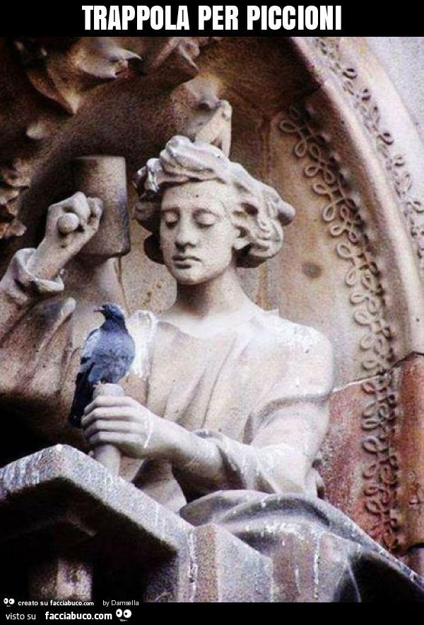 Trappola per piccioni for Trappola piccioni