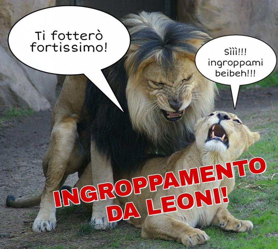 spine sul pene di un leone suscitare un uomo unerezione